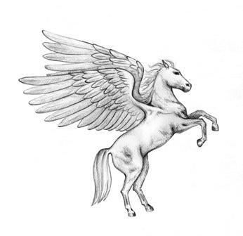 pegasus - olympus horse riding club
